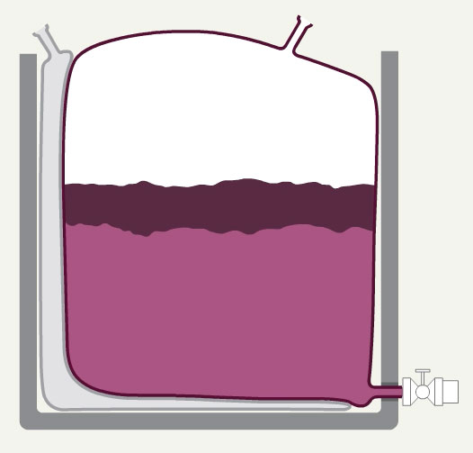 GOfermentor wine production process animation