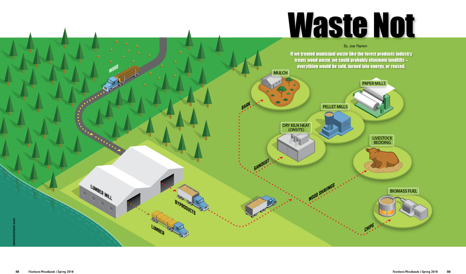 wood waste byproducts illustration