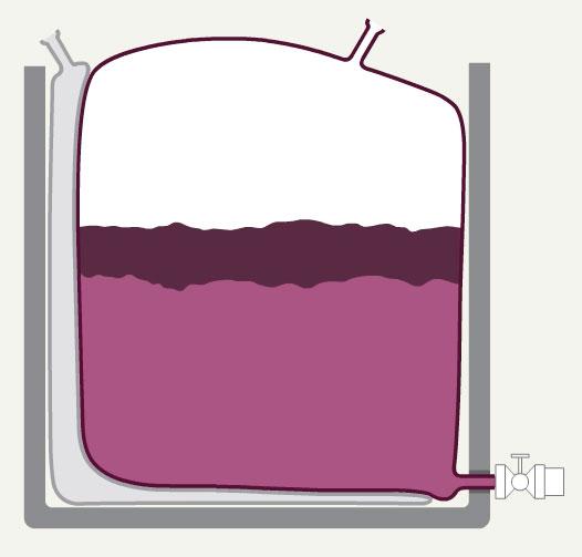 GOfermentor wine production process animation