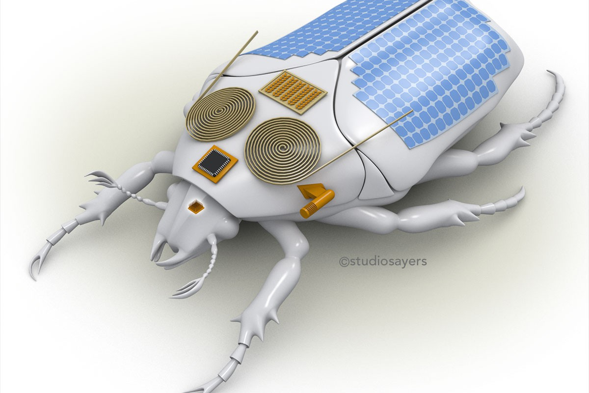 cyborg beetle insect micro air vehicle illustration
