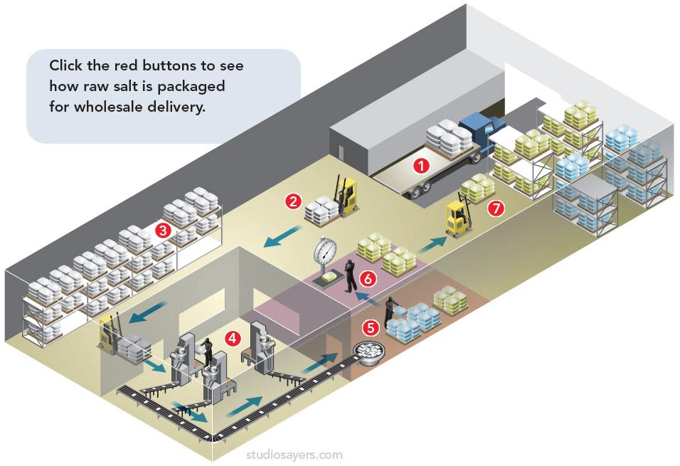 Salt Process Diagram